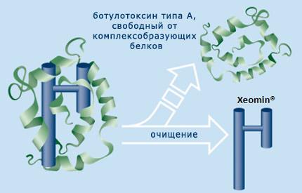 Ботулотоксин нового поколения