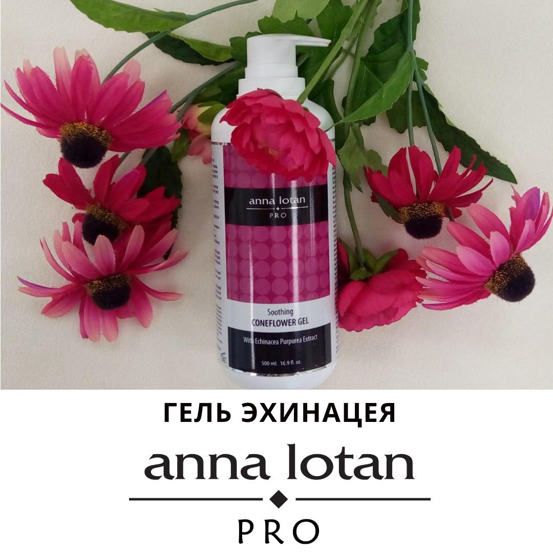 Эхинацея-гель от бренда Anna Lotan Pro